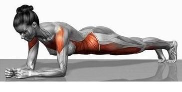 Welke spieren train je met planking